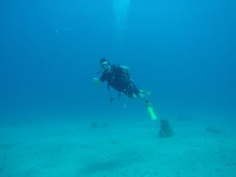 My first scuba dive in St. Thomas, U.S. Virgin Islands